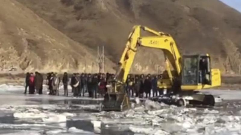 More than 100 yaks die after plunging into frozen Chinese river