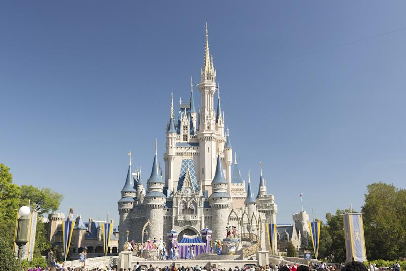 This Is Why You Never See Mosquitoes at Disney World