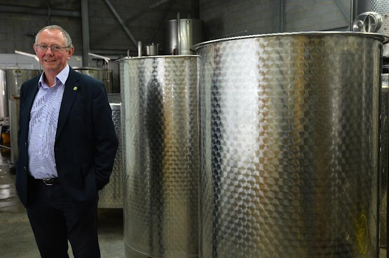 """English vineyards have found their """"niche"""" with sparkling wines, says Chris Foss, head of the wine department at Plumpton College,Britain's centre for excellence in viniculture (AFP Photo/GLYN KIRK)"""