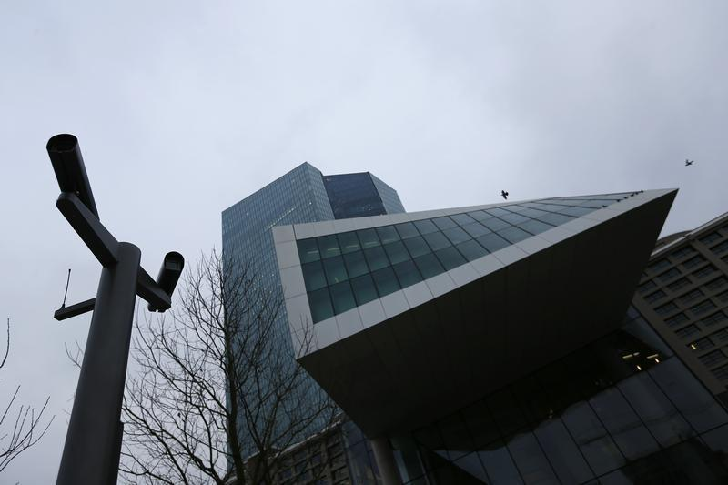 Birds fly past the new ECB headquarters in Frankfurt