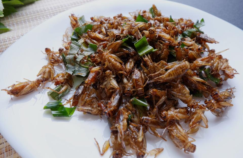 Horse cricket fried with sliced lemon grass