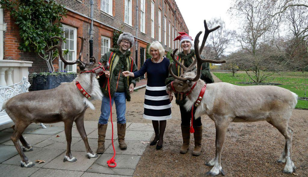 <p>The Duchess of Cornwall re-wore a stripped dress outfit as she welcomed children supported by Helen & Douglas House and Roald Dahl's Marvellous Children's Charity to Clarence House to decorate Christmas trees. </p>