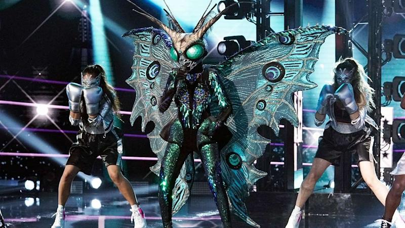 The Masked Singer': The Butterfly Gets the Net -- See What Music ...