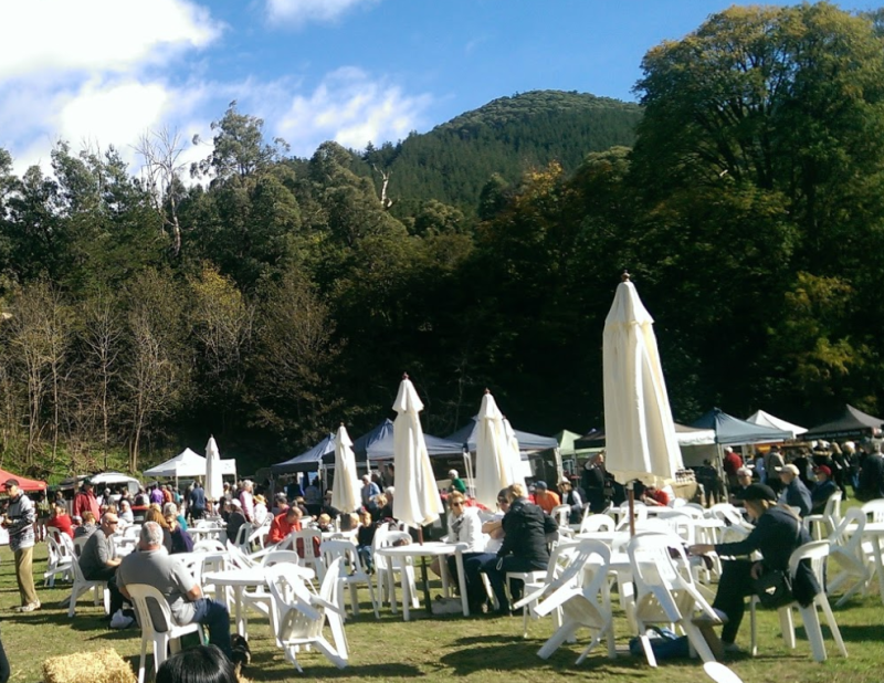 People celebrating at festival in Victorian alpine region before it was transformed into ghost town after bushfire.