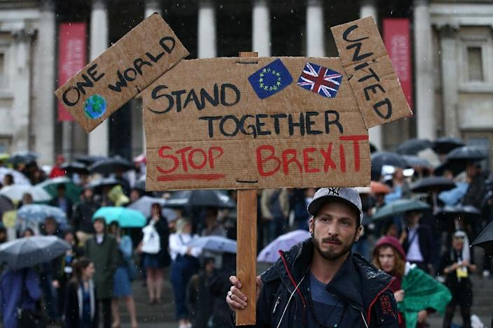 """A demonstrator holds up a placard saying """"Stand together, Stop Brexit"""" at an anti-Brexit protest in Trafalgar Square on June 28, 2016 (AFP Photo/Justin Tallis)"""