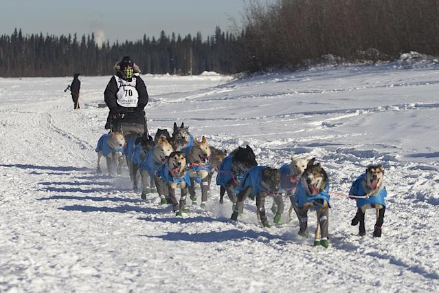 <p>Robert Redington, the youngest of three Redington brothers competing in the 2017 Iditarod, drives his dogs down the Chena River in Fairbanks, Alaska, Monday, March 6,2017. (AP Photo/Ellamarie Quimby) </p>