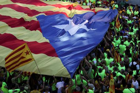 A huge Estelada (Catalan separatist flags) is carried as thousands of people gather for a rally on Catalonia's national day 'La Diada' in Barcelona