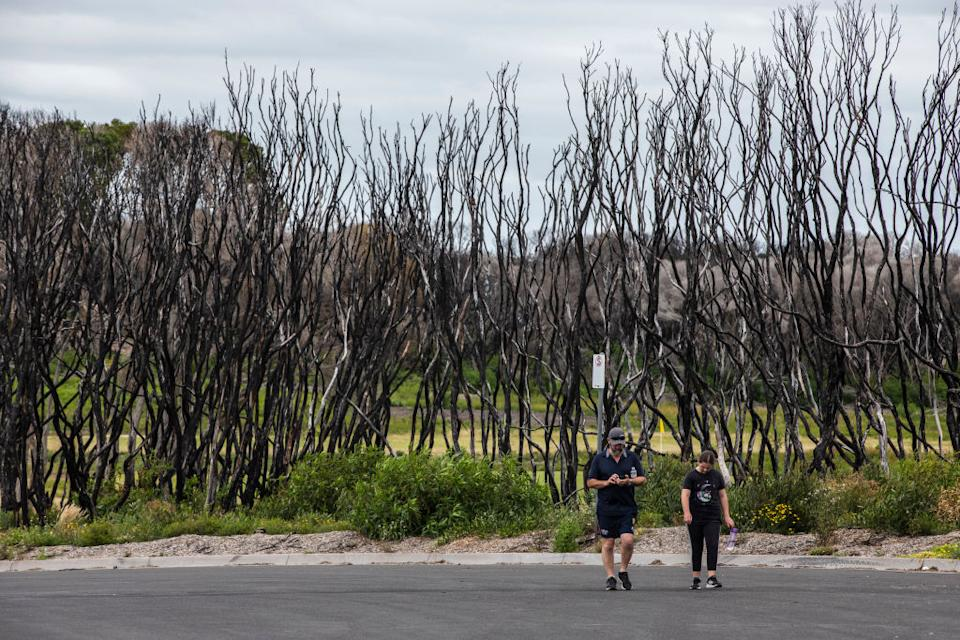 A man and his daughter walk along the burnt trees at Bastion Beach where locals and tourists were evacuated last year in Mallacoota, Australia.
