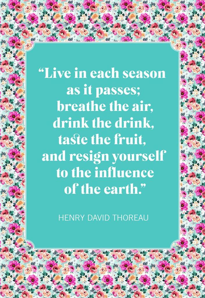 """<p>""""Live in each season as it passes; breathe the air, drink the drink, taste the fruit, and resign yourself to the influence of the earth.""""</p>"""