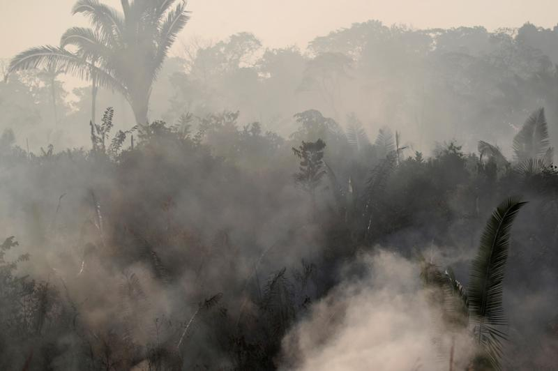 Smoke billows among trees during a fire in an area of the Amazon rainforest near Humaita, Amazonas State, Brazil, Brazil August 14, 2019. Picture Taken August 14, 2019. REUTERS/Ueslei Marcelino
