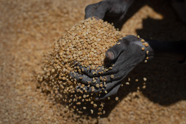 """An Ethiopian woman scoops up portions of yellow split peas to be allocated to waiting families after it was distributed by the Relief Society of Tigray in the town of Agula, in the Tigray region of northern Ethiopia, on Saturday, May 8, 2021. The war in Tigray has spawned massacres, gang rapes and the widespread expulsion of people from their homes, and the United States has declared """"ethnic cleansing"""" in western Tigray. Now, on top of those atrocities, Tigrayans face another urgent problem: hunger and starvation. (AP Photo/Ben Curtis)"""