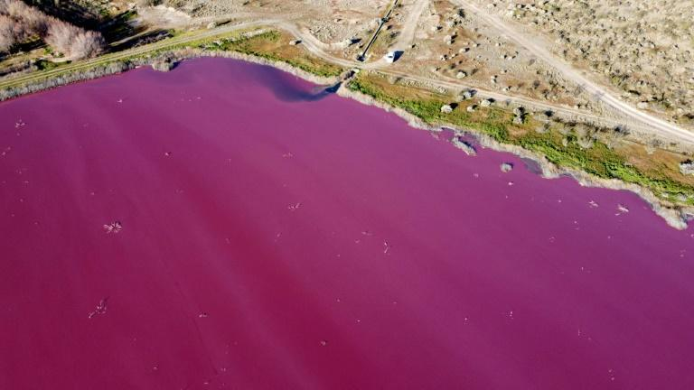 An Argentina lagoon turned a bright pink color caused by sodium sulfite, an anti-bacterial product used in fish factories