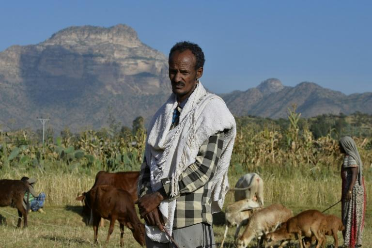 Ethiopian farmer Alema Baraki, 52, on his land in Sebeya village on the frontier with Eritrea. A decades-long dispute over the border remains one of the outstanding problems in ties (AFP Photo/MICHAEL TEWELDE)