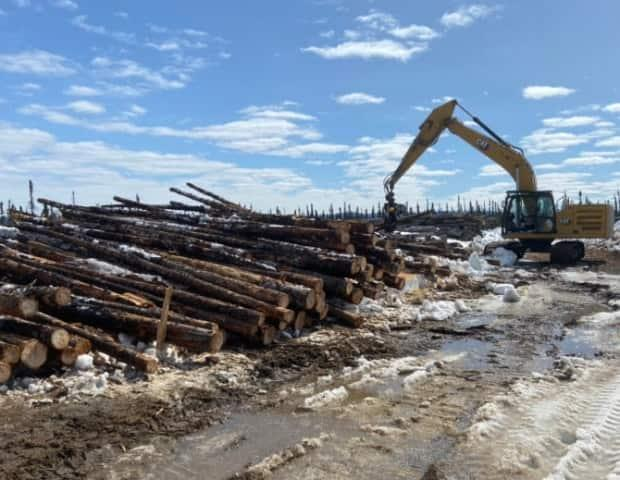 While some of the timber was cut as long ago as 2013, the company said the wood remains in good shape because it is frozen for at least seven months a year.