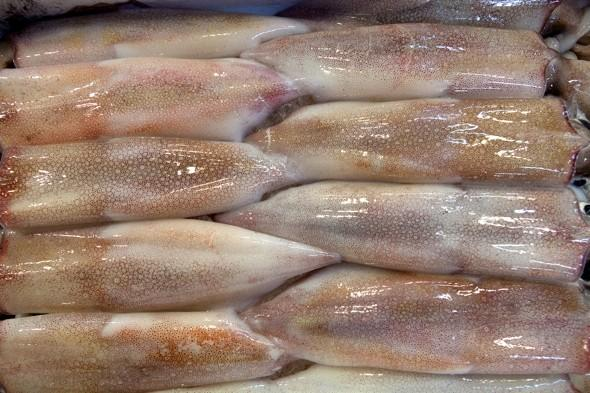 Fishmonger finds live bomb inside squid