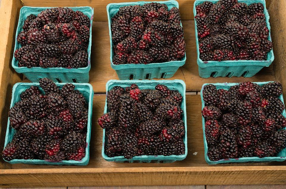 """<div><p>""""Anything with marionberries!"""" </p><p>—<a href=""""https://www.reddit.com/user/-Amico-/"""" rel=""""nofollow noopener"""" target=""""_blank"""" data-ylk=""""slk:u/-Amico-"""" class=""""link rapid-noclick-resp"""">u/-Amico-</a></p><p><b>Runner-up:</b> """"I'd say cedar-plank grilled salmon with a marionberry or huckleberry glaze."""" —<a href=""""https://www.reddit.com/user/NotASlaveToHelvetica/"""" rel=""""nofollow noopener"""" target=""""_blank"""" data-ylk=""""slk:u/NotASlaveToHelvetica"""" class=""""link rapid-noclick-resp"""">u/NotASlaveToHelvetica </a></p></div><span> Getty Images</span>"""