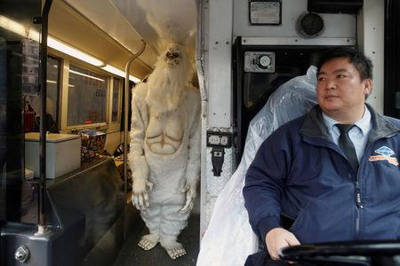 "FILE PHOTO: A tour bus driver watches as an actor dressed as a 'Yeti' walks on his bus during a promotional event for Travel Channel's ""Expedition Unknown: Hunt for the Yeti"" in Manhattan, New York City, U.S. on October 4, 2016.  REUTERS/Brendan McDermid/File Photo"