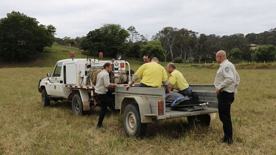 National Parks and Wildlife rangers transported the animal back to the ocean. Photo: NPWS
