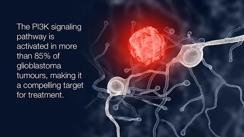PI3K signaling pathway is activated in more than 85% of GBM tumours