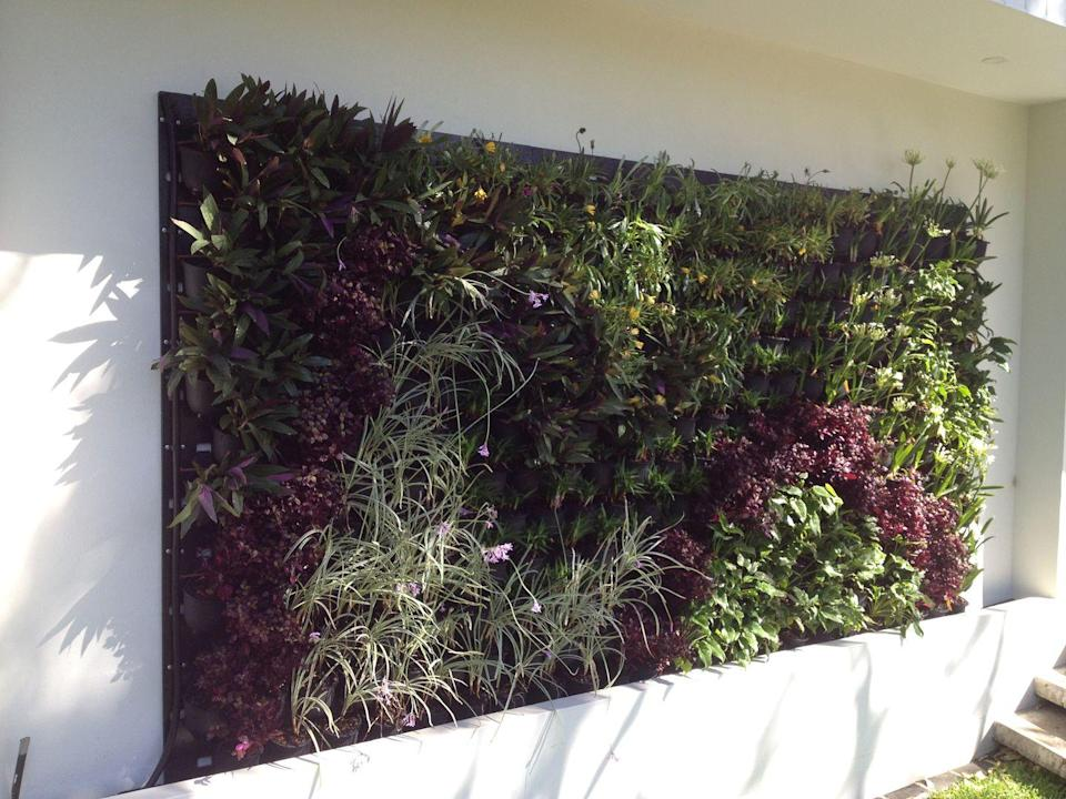 """<p>This innovative vertical garden system can be fixed easily to most surfaces. It's waterproof and weatherproof, and each sheet can hold 128 Green4Air pods in which to grow plants. </p><p><a class=""""link rapid-noclick-resp"""" href=""""https://www.ebay.co.uk/itm/Green4Air-Infinity-Greenwall-Fixing-Sheet-/383580923278"""" rel=""""nofollow noopener"""" target=""""_blank"""" data-ylk=""""slk:BUY NOW"""">BUY NOW</a> £215</p>"""