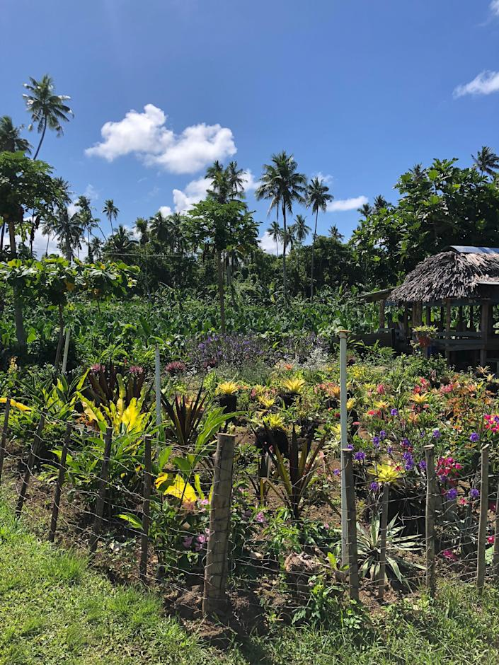 Peace Corps volunteer Fellina Fucci took these photos near her home while serving in Samoa in 2018 and 2019. Fucci said she was sexually assaulted three times during service. After the last, she said a Peace Corps employee questioned her memory and chastised her for not using a whistle during the attack.