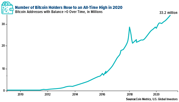 number of bitcoin holders rose to an all time high in 2020