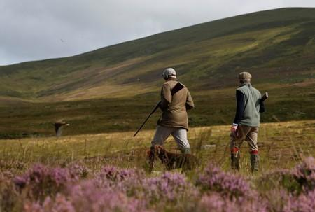 Members of a shooting party on the Rottal Moor on the opening day of the Grouse shooting season, Kirriemuir, Scotland