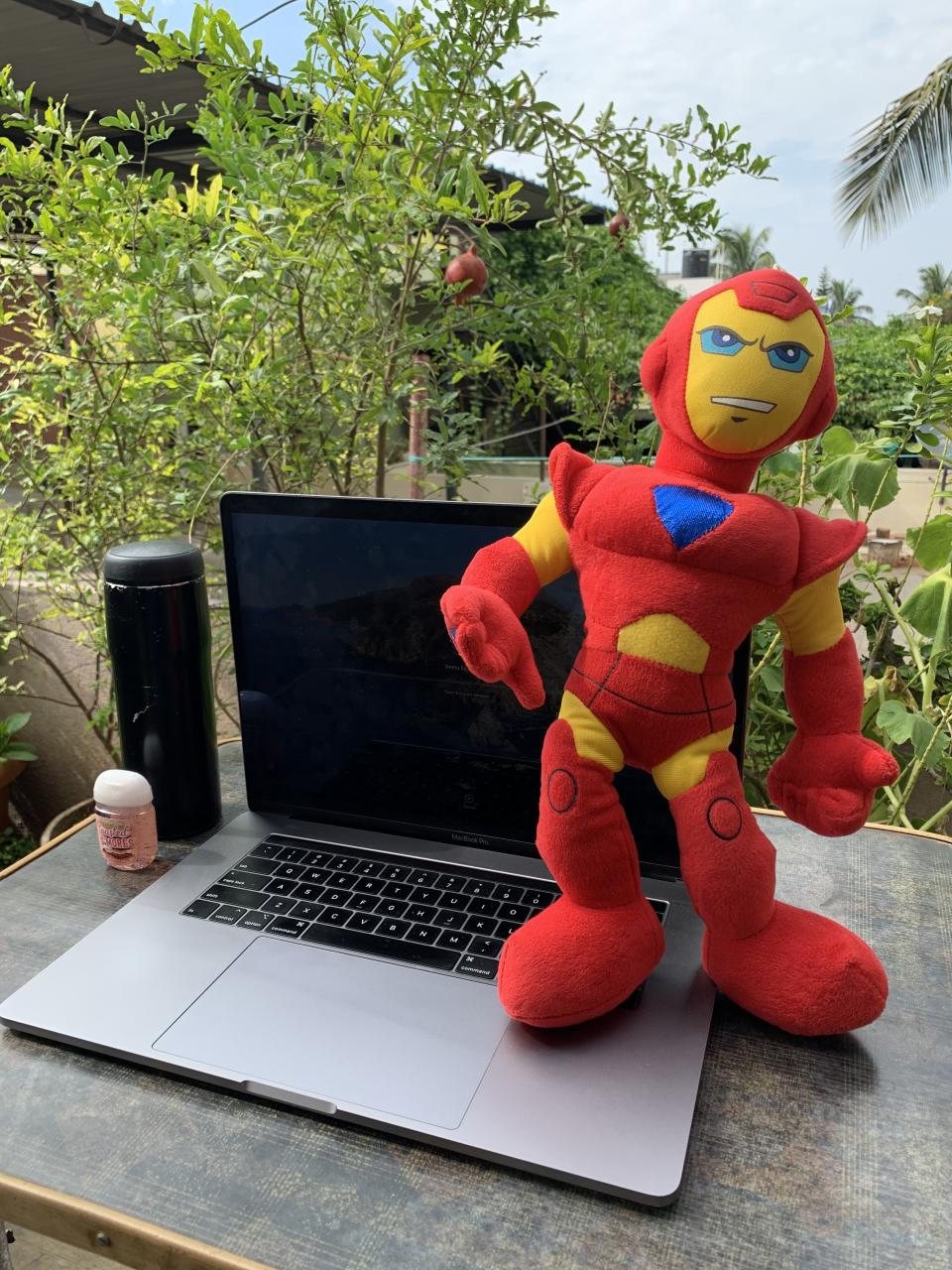 Bring your superhero/ stuff toy for company as you work from your garden <em>Photo credit:</em>
