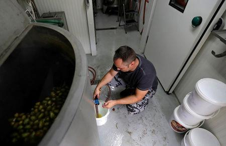 """Radek Spacil, co-owner of the """"Smart Brewery"""", brews a beer in a portable brewery built in a standard shipping container, in Prague, Czech Republic, September 2, 2017. Picture taken September 2, 2017.   REUTERS/David W Cerny"""