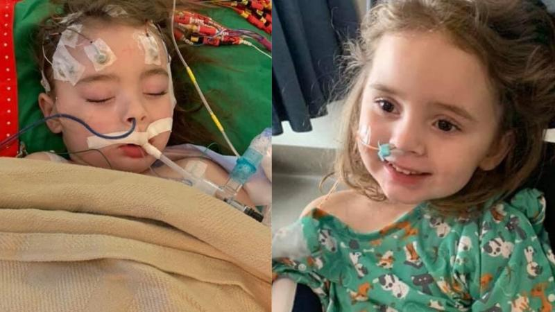 Jade DeLucia went blind after developing complications from Influenza B. Images via GoFundMe.