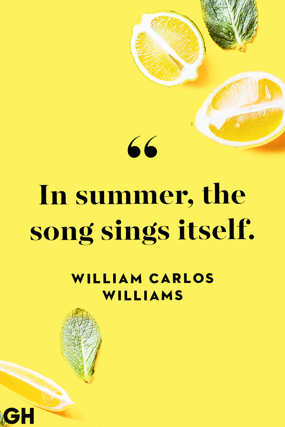 <p>In summer, the song sings itself.</p>