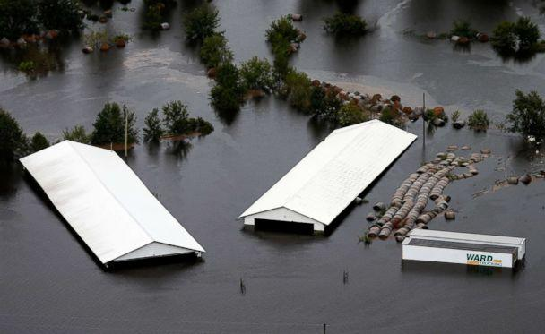 PHOTO: Hog farm buildings are inundated with floodwater from Hurricane Florence near Trenton, N.C., Sept. 16, 2018. (Steve Helber/AP)