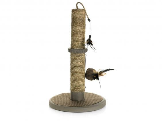 If you're on a budget, pick up this affordable scratching post (Wilko)