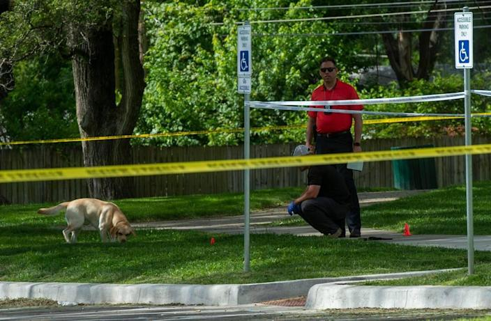 A police dog sniffs for evidence on the scene of the homicide that occurred at 108th and Sycamore, Tuesday, June 8, 2021 in Kansas City. The victim of the shooting was a juvenile who was transported to a hospital and later died.