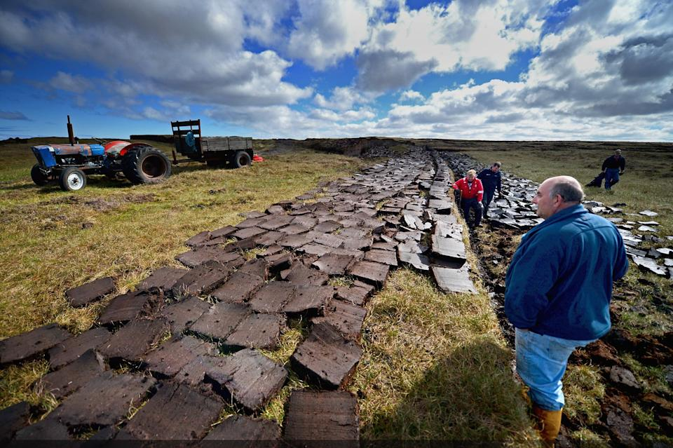 <p>Some 80 per cent of the UK's peatland is considered to be in a degraded state</p> (Getty Images)