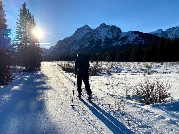 Thousands of Albertans bought parking passes so that cross-country ski routes like the Bill Milnes Trail in Kananaskis could be groomed and maintained. (Helen Pike/CBC - image credit)
