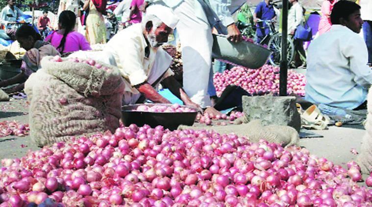 onion exports, rising prices of onions, Pimpalgaon market leader on onions, pune onion sale, pune onion export, Pune city news