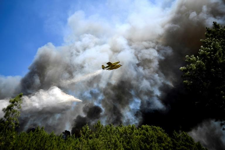 This year's forest fires have been the deadliest that Portugal has endured