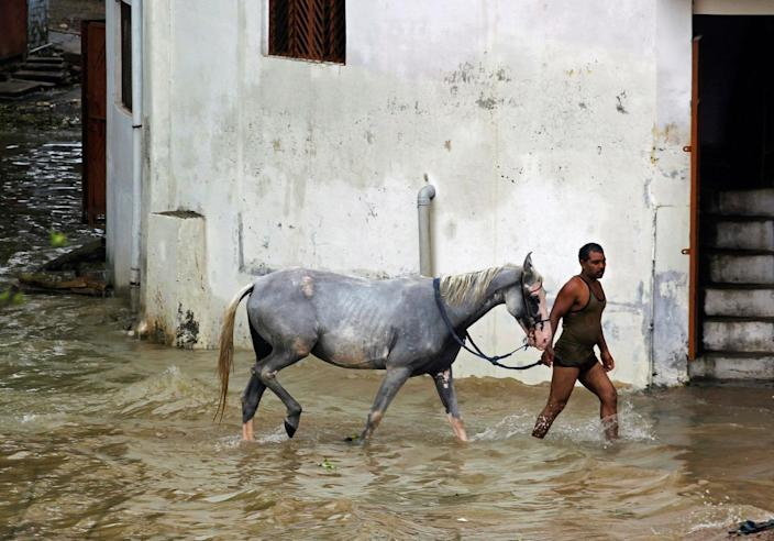<p>A man wades through water with a horse in a flooded residential colony in Allahabad, India August 23, 2016. (REUTERS/Jitendra Prakash)</p>