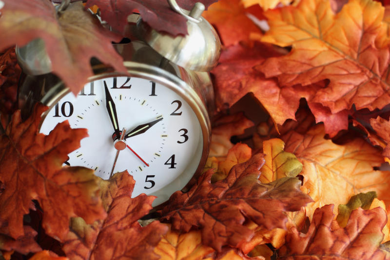 Vintage alarm clock buried underneath colorful fallen autumn leaves with shallow depth of field. Daylight savings time concept with clock hands at almost 2 am.