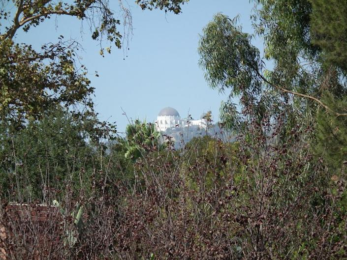 <p>After clearing away some brush from the yard, Kenihan discovered this view of Griffith Observatory.<i> (Photo: Charmaine David for Kenihan Development)</i><br></p>