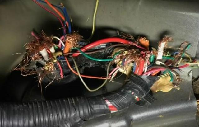 Toyota soy-based wiring
