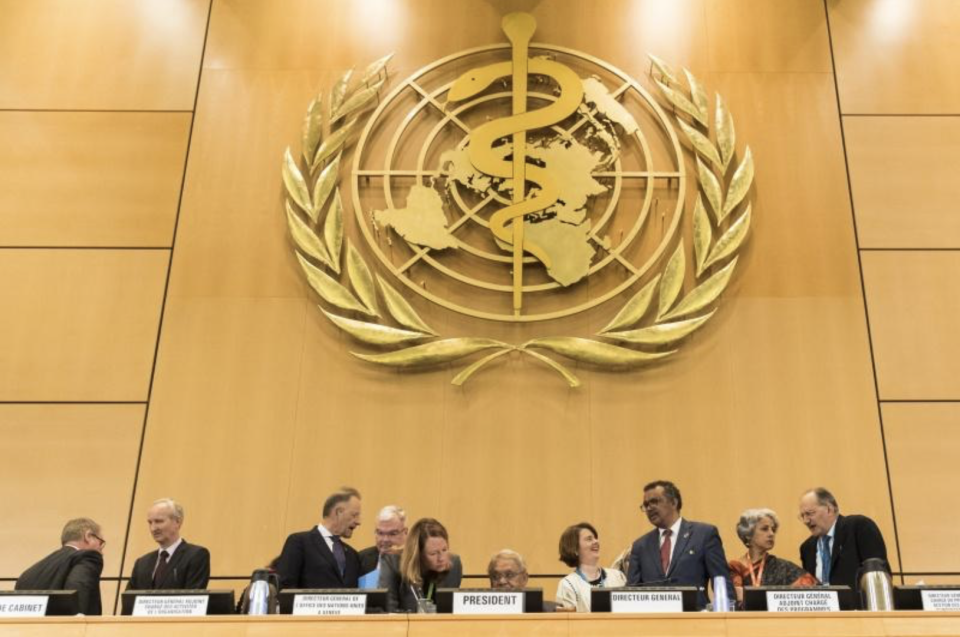 <p>▲世界衛生大會( WHA )本月 18 日召開。圖為 2018 年開議資料照。| The picture shows the World Health Assembly (WHA) in 2018.(圖/美聯社/達志影像|AP)</p>