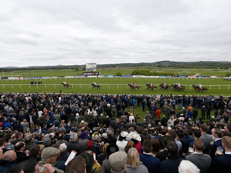 Punchestown, Ireland (Getty)