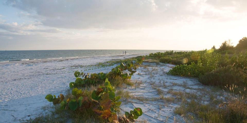 """<p>Sanibel Island is a low-key spot on <a href=""""https://www.bestproducts.com/fun-things-to-do/g2471/amazing-beaches-in-florida/"""" rel=""""nofollow noopener"""" target=""""_blank"""" data-ylk=""""slk:Florida's"""" class=""""link rapid-noclick-resp"""">Florida's</a> west coast that's known for its abundance of seashells. People come from all over to do the """"Sanibel stoop,"""" which is what island dwellers call combing the beaches for one-of-a-kind seaglass finds. <br></p><p><a class=""""link rapid-noclick-resp"""" href=""""https://go.redirectingat.com?id=74968X1596630&url=https%3A%2F%2Fwww.tripadvisor.com%2FHotel_Review-g34616-d219000-Reviews-West_Wind_Inn-Sanibel_Island_Florida.html&sref=https%3A%2F%2Fwww.redbookmag.com%2Flife%2Fg34756735%2Fbest-beaches-for-vacations%2F"""" rel=""""nofollow noopener"""" target=""""_blank"""" data-ylk=""""slk:BOOK NOW"""">BOOK NOW </a> West Wind Inn</p><p><a class=""""link rapid-noclick-resp"""" href=""""https://go.redirectingat.com?id=74968X1596630&url=https%3A%2F%2Fwww.tripadvisor.com%2FHotel_Review-g34616-d126159-Reviews-Sundial_Beach_Resort_Spa-Sanibel_Island_Florida.html&sref=https%3A%2F%2Fwww.redbookmag.com%2Flife%2Fg34756735%2Fbest-beaches-for-vacations%2F"""" rel=""""nofollow noopener"""" target=""""_blank"""" data-ylk=""""slk:BOOK NOW"""">BOOK NOW </a> Sundial Beach Resort and Spa</p>"""
