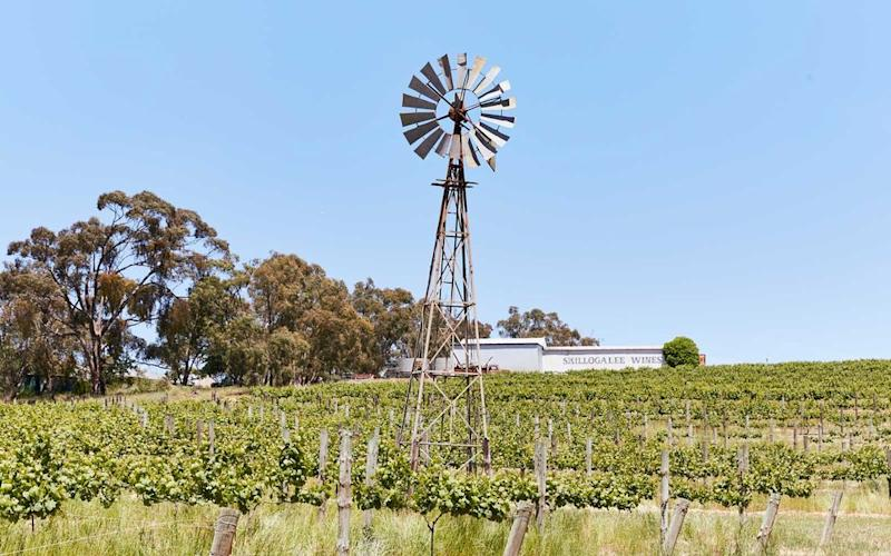 Skillogalee, a winery and restaurant in the Clare Valley, | John Laurie