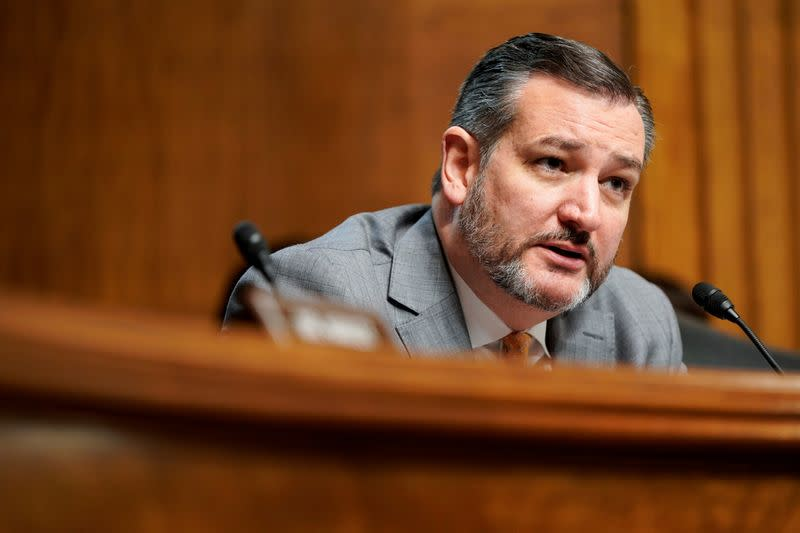 FILE PHOTO: Senator Ted Cruz (R-TX) questions judicial nominees during a hearing before the Senate Judiciary Committee on Capitol Hill in Washington