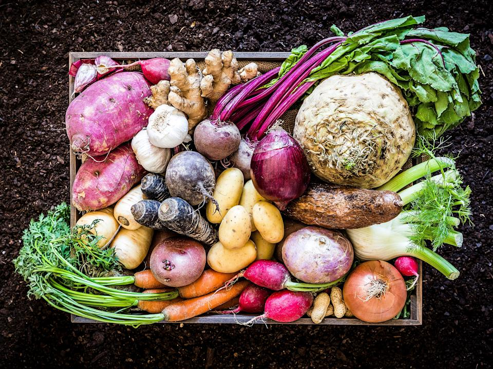 A new report shows shifting to a more plant-based diet is instrumental in improving both the health of humans and the planet (Getty/iStock)