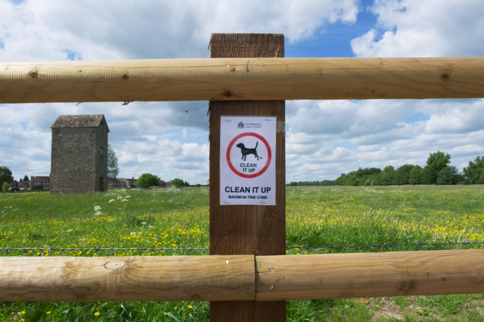 <em>Dog owners can face up to a £1,000 fine for not clearing up their pet's mess (Rex)</em>