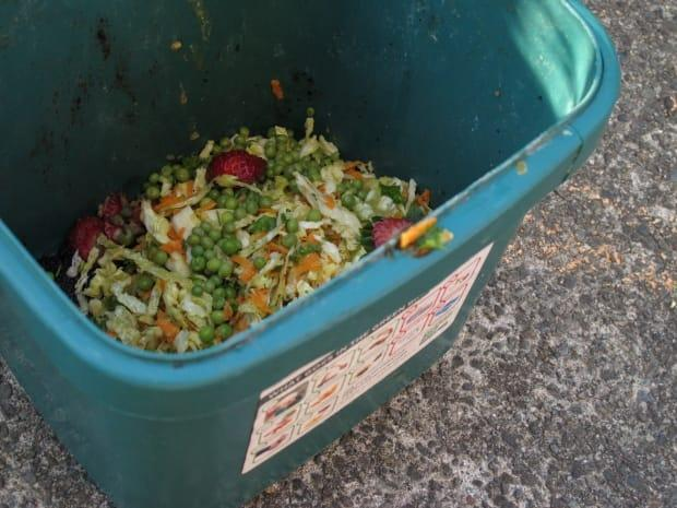 Regina's organic waste program would allow residents to simply 'scrape their plate.'